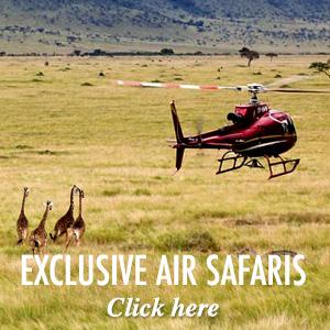 Heli-safari